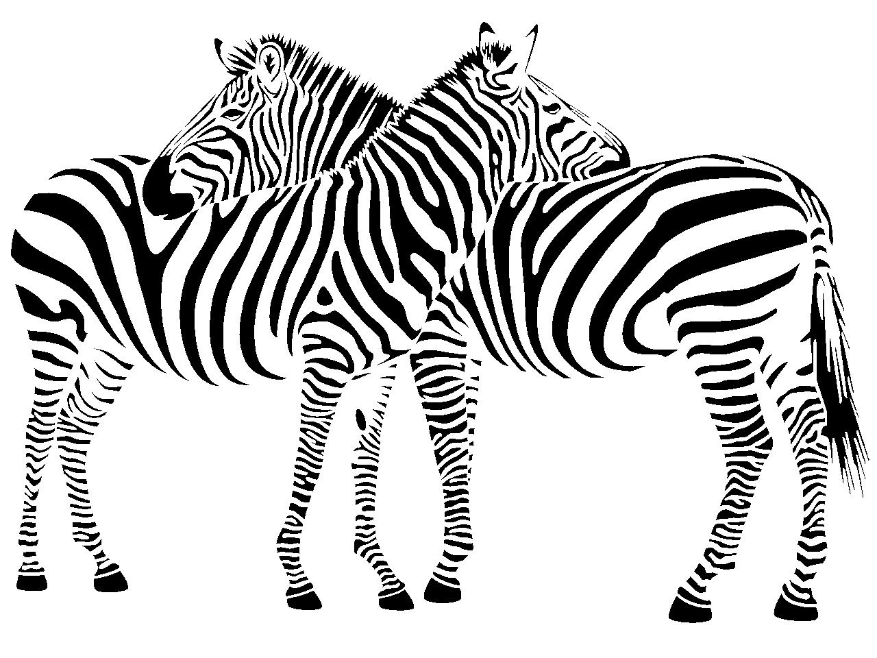 Wandtattoo Zebra Pärchen | ToCut Werbetechnik Wandtattoo Beschriftung